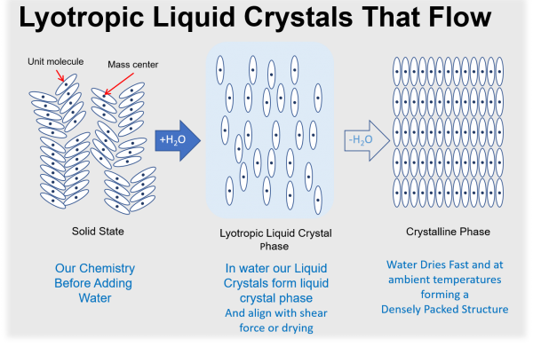Lytropic Liquid Crystals
